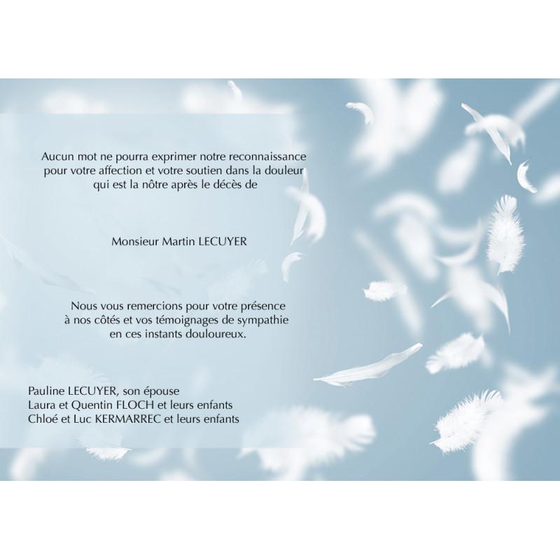Les plumes d'anges des cieux