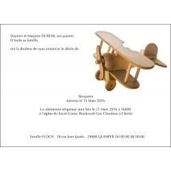 L'avion du Petit Prince