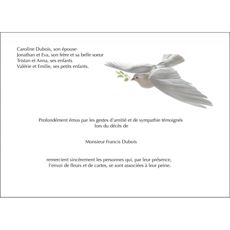 La colombe et l'olivier