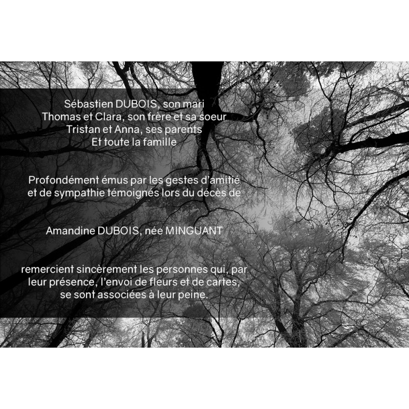 Réseau de branches