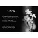 Petites fleurs en noir et blanc